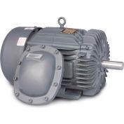 Baldor-Reliance Motor EM7056T-C, 20//15HP, 1765//1465RPM, 3PH, 60//50HZ, 256T