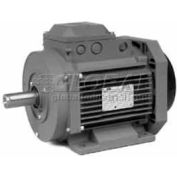Baldor Metric IEC Motor, EMM18184-PP, 3PH, 400/460V, 1500/1800RPM, 18.5/22 KW/HP, 50/60Hz, D180