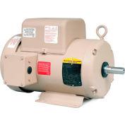 Baldor-Reliance Motor FDL3619TM, 3HP, 1725RPM, 1PH, 60HZ, 184T, 3634LC, TEFC, F1