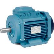 Baldor Metric IEC Motor, MM07552-AP, 3PH, 230/400//460V, 3000//3600RPM, .55/.75 KW/HP, 50//60Hz, D71