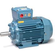 Baldor Metric IEC Motor, Flameproof, MM08554-EX3, 3PH, 230/400V, 1500RPM, .55/.75 KW/HP, 50Hz, D80