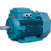 Baldor-Reliance Metric IEC Motor, Non-Sparking, MM10034-EX1,3PH,230/400V,1500RPM,3/4 KW/HP,50HZ,D100