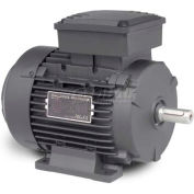 Baldor Metric IEC Motor, MM5150-5, 3PH, 575V, 1800RPM, .18/.25 KW/HP, 60Hz, D63