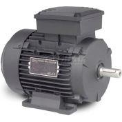 Baldor Metric IEC Motor, MM5500-5, 3PH, 575V, 3600RPM, .75/1 KW/HP, 60Hz, D80