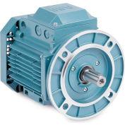 Baldor Metric IEC Motor, MVM08752D-AP, 3PH, 230/400//460V, 3000/36000RPM, .75/1 KW/HP, 50//60Hz, D80