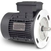Baldor Metric IEC Motor, MVM5300D-5, 3PH, 575V, 3600RPM, .37/.5 KW/HP, 50Hz, D71D