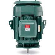 Baldor-Reliance Motor VHECP4316T, 75HP, 1780RPM, 3PH, 60HZ, 365HP, 1482M, TEFC