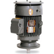 Baldor Motor VLCP3661T, 3HP, 1725RPM, 3PH, 60HZ, 182LP, 0623M, TEFC, F1
