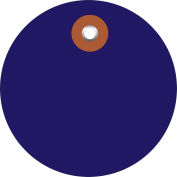 "Plastic Circle Tags 2"" Diameter Blue - 100 Pack"
