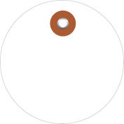 "Plastic Circle Tags 3"" Diamter White - 100 Pack"