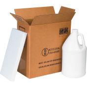"""Two 1 Gal. Plastic Jug Haz Mat Shipper Kit, 12""""L x 6""""W x 12-3/4""""H"""