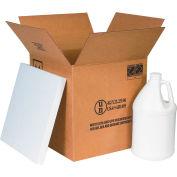 "1 Gallon Plastic Jug Shipper Kit - 4 Kits 12-1/16"" x 12-1/16"" x 12-3/4"""