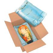 "Instapak Quick® Room Temperature Expandable Foam Bags 22"" x 27"", 24/PACK"