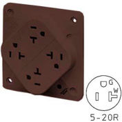 Bryant 21254HB QUADPLEX®Receptacle / 20A / 125V / Brown / Hospital Grade