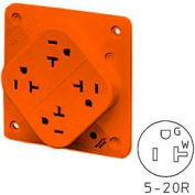 Bryant 21254IGOL QUADPLEX®Receptacle, 20A, 125V, Orange