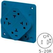 Bryant 21254SA QUADPLEX®Receptacle / 20A / 125V / Blue