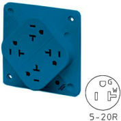 Bryant 21254SLA QUADPLEX®Receptacle, 20A, 125V, Blue, Wire Leads