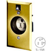 Bryant 2828G Clock Hanger Receptacle, 15A, 125V, Brass
