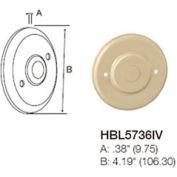 Bryant HBL5736IV Blank Cover, Ivory