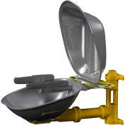 Bradley® Eye-Face Wash, SS Bowl & Dust Cover - S19224DCFW