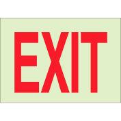 """Brady® 80281 BradyGlo Exit Sign, Polyester; Polystyrene, 10""""W x 7""""H"""