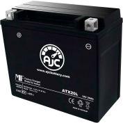 AJC Battery Yamaha RX Warrior 998CC Snowmobile Battery (2004-2005), 18 Amps, 12V, B Terminals