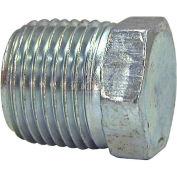 "Buyers Hex Head Plug, H3159x12, 3/4"" Male Pipe Thread - Min Qty 22"