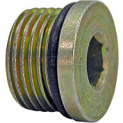 "Buyers Straight Thread O-Ring Hex Socket Plug, H7238x8, 1/2"" Port Size - Min Qty 45"