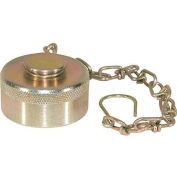 "Buyers Wing Type Quick Detach Hydraulic Coupler, Qddc161, 1"" Npt Coupler, Dust Cap W/Chain-Min Qty 4"