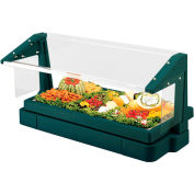 Cambro BBR480519 - Buffet Bar with Sneeze Guard 24 x 48, Green