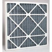 """Purolator® 5262884644 Carbon Pleated Filter 16""""W x 25""""H x 4""""D - Pkg Qty 6"""