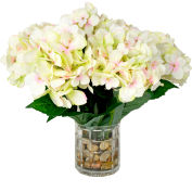 Creative Displays White & Pink Hydrangea Clusters In A Rock Filled Glass Vase