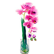 Creative Displays Mauve Phalaenopsis Orchid In A Clear Cylinder Glass Vase