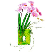 Creative Displays Cymbidium Orchid In Contemporary Style Green Glass Vase