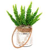 Creative Displays Sedum Cactus In Silver Jar With Rope Handle