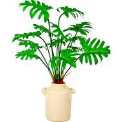 Creative Displays Philodendron In Cream Ceramic Pot