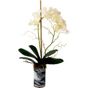 Creative Displays White Orchid In Marble Glass Vase