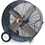 "TPI Belt-Drive Blower - 48"" Blade Diameter - 120V - 1 Hp - Standard Fan"