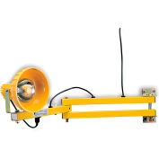 "TPI DL40-P Dock Light - 40"" Arm Length - Incandescent"