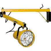 "TPI Premium Dock Light - 40"" Arm Length - Fluorescent"