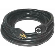 Pro Power™ D13011050 Extension Cord With 50 ft Cord, 10/4 Awg Sz, L14-30P to L14-30R, Black