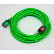 Pro Glo® D17444100 Extension Cord With 100 ft Cord, 12/3 Awg Sz, Green