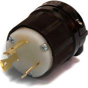 Century® Twistlock Plug NEMA L6-30P, 30A, 250V