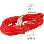 Conntek 20241-100, 100' SJTW, 14/3 Outdoor Extension Cord with NEMA 5-15P/R