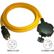 Conntek, 20500-010, 10-Ft 20-Amp Generator Power/Extension Cord with NEMA L14-20P to 5-15/20R*4