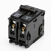 Murray® MURMP2100 Circuit Breaker Type MP-T 2-Pole 100A