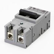 Zinsco® UBITBFP1252 Main Breaker Type QFP 2-Pole 125A