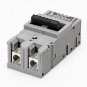 Zinsco® UBITBFP1502 Main Breaker Type QFP 2-Pole 150A
