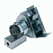 Field Controls Draft Inducer 46073000, 120,000 BTU DI-1