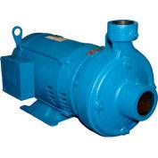 Burks 26CW00, 320GA5-1-1/4 Centrifugal End Suction - Three Phase - 2 HP - 80 Cap. Gal.